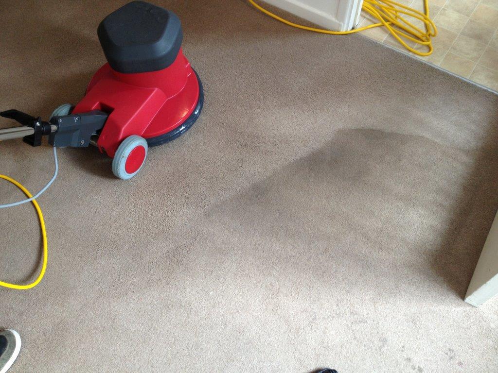 Carpet Cleaning Cheltenham
